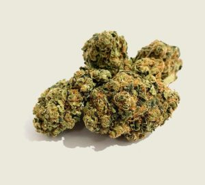"Product photo of our bestseller organic CBD aroma flower ""Vibiota"""