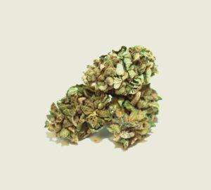 "Product photo of our organic CBD aroma flower ""Fedora"""