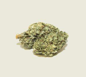 "Produktfoto unserer Bio CBD Aromablüte ""Finola"""