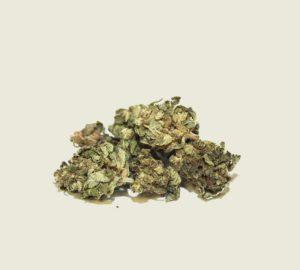 "Product photo of our organic CBD aroma flower ""Mango"""