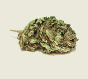 "Produktfoto unserer Bio CBD Aromablüte ""Melon"""