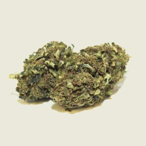 "Product photo of our organic CBD aroma flower ""Silvana"""