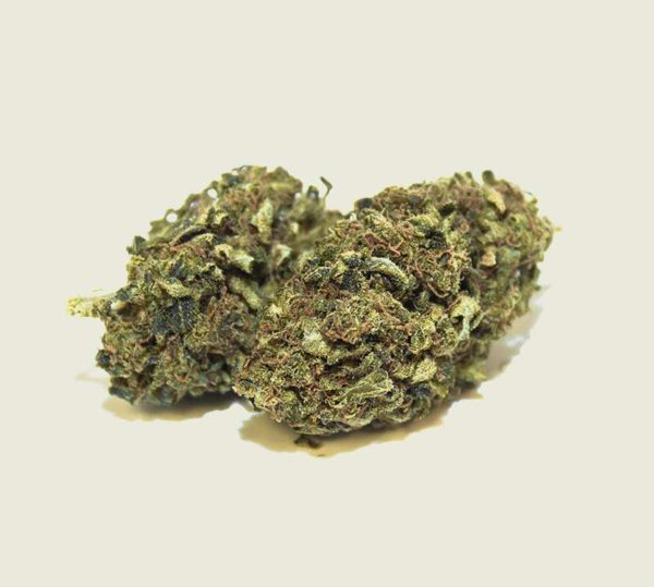 "Product photo of our organic CBD aroma flower ""Silvana"""
