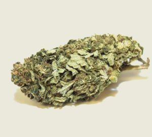 """Product photo of our organic CBD aroma flower """"Sisi"""""""