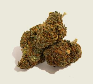 """Product photo of our organic CBD aroma flower """"V12"""""""