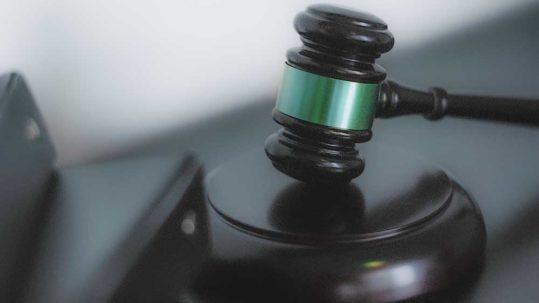 """Vibiota Blog Beitragsbild zum Thema """"CBD Gesetzeslage"""""""