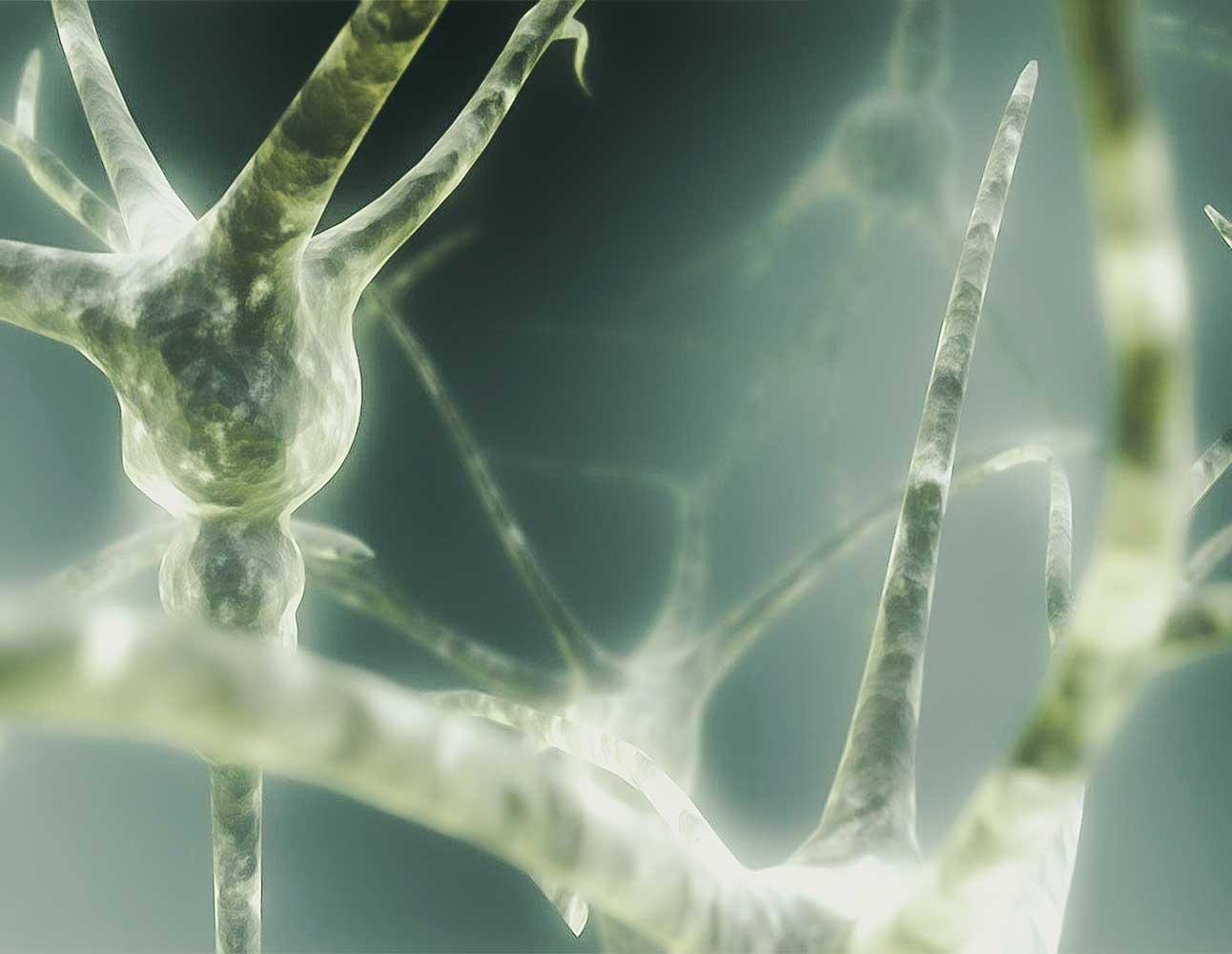 "Vibiota Blog Beitragsbild zum Thema ""Multiple Sklerose und CBD"""